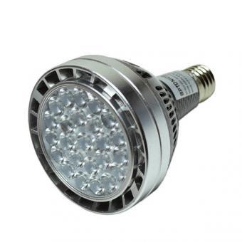 Bec spot LED PAR30
