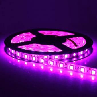Banda LED 5050 60 led interior magenta